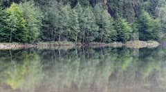 Mountain lake shore reflecting in the water Stock Footage
