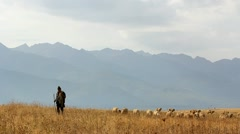Romanian pastoral scenery Stock Footage