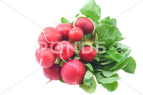 Stock photo of radish isolated on white