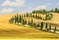 Old farm in val d'orcia (tuscany) Stock Photos