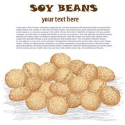 Soy beans Stock Illustration