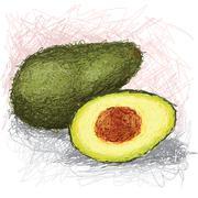 Stock Illustration of avocado fruit