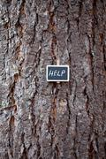 Background of tree bark and blackboard with the inscription help Stock Photos