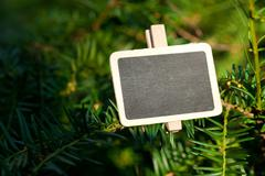 Blackboard attached to a tree branch in the forest Stock Photos