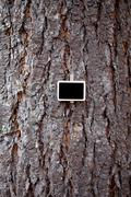 Blackboard attached to a background of tree bark Stock Photos
