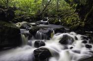 Stock Photo of aira beck, lake district, england