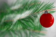 Stock Photo of red christmas ornament hanging in evergreen tree