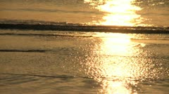 Golden Reflections on Beach Waves - HD 720 Stock Footage