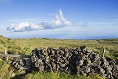 Pasture landscape of pico island, azores Stock Photos