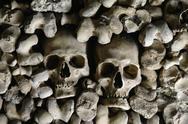 Stock Photo of human skulls