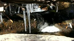Icicle in stream in beautiful Rocky Mountains Stock Footage