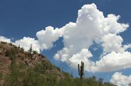 Stock Photo of Arizona Saguaro Cloud Hillside