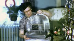 BIRDCAGE for Pet Parakeet Christmas Present 1950s Vintage Film Home Movie 4573 Stock Footage