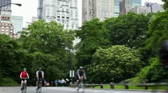 Central park in new york city - timelapsing Stock Footage