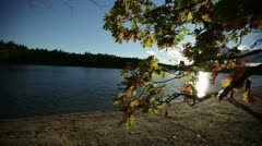 Family beach walden pond sunset Stock Footage