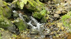 Falls on the small mountain creek Stock Footage