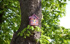 pink nesting box - stock photo