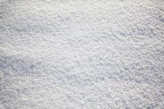 winter snow background - stock photo