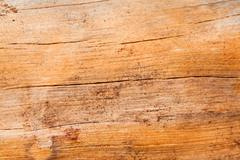 Stock Photo of wooden texture