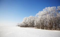 beautiful winter landscape - stock photo