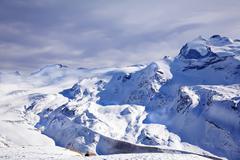 purple winter landscape - stock photo