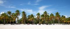 cap cana beach - stock photo