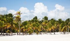 Stock Photo of cap cana beach scape
