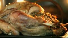 Turkey in Oven Stock Footage