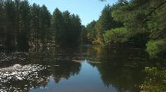 Autumn Pond in NH with Wildlife Stock Footage