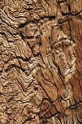 Distressed wood grain Stock Photos