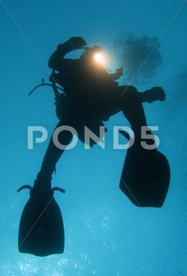 Stock photo of Diver
