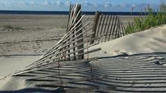 beach calling! - stock footage