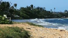 Tropical Beach 15 Stock Footage