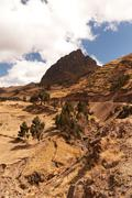 Stock Photo of Typical Andean Landscape In Ecuadorian Cordillera Vertical