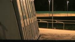 Dog race 2 Stock Footage