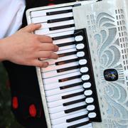 Folk accordion player - stock photo