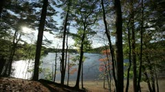 Walden pond october through trees Stock Footage