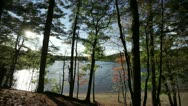 Stock Video Footage of walden pond october through trees