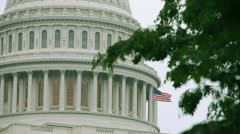 Capitol Flag 2 Stock Footage