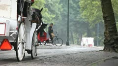 Horse Carriage 5 Stock Footage
