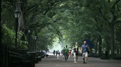 Central Park 8 Stock Footage