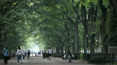 Central Park 9 Stock Footage
