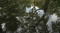Pond Reflection Stock Footage