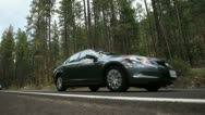 Forest road 1 Stock Footage