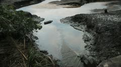 In Africa, Nigeria a creek is polluted with crude oil Stock Footage