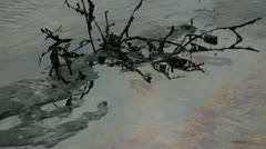 In Africa, Nigeria the water of a mangrove laguna is polluted  by an oil spill Stock Footage