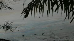 In Africa, Nigeria the water in the village Goi is polluted with oil Stock Footage