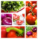 Stock Photo of collage of salad with tomato onion lettuce and red sweet pepper