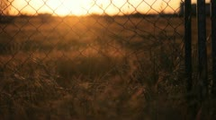 Sunset Field 2 Stock Footage