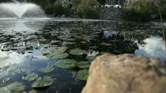 Beautiful Pond - stock footage